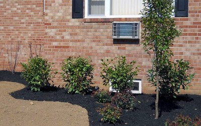 new-jersey-landscapers