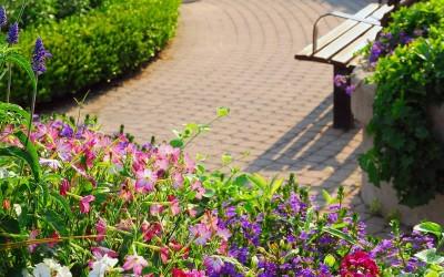 park_stone_walkway_flowers