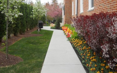 south-jersey-home-lanscaping-path