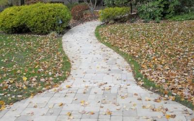 stone_walkway_autumn_cherryhill_nj